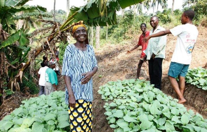 Nearly 60 percent of DR Congo's population resides in villages. Here from a small cooperative that manages to feed 35 families.