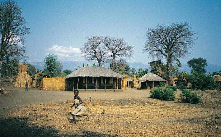 Typical village building