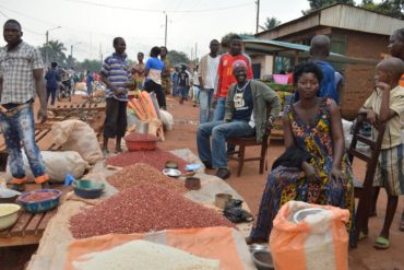 Economy and Business in the Central African Republic