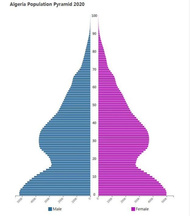Algeria Population Pyramid 2020