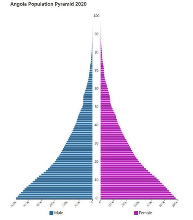 Angola Population Pyramid 2020