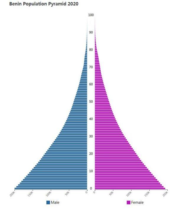 Benin Population Pyramid 2020