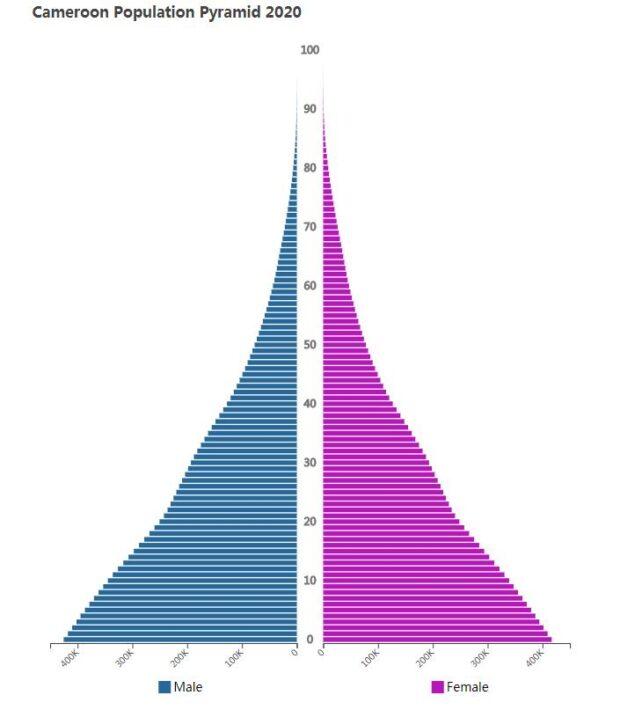 Cameroon Population Pyramid 2020