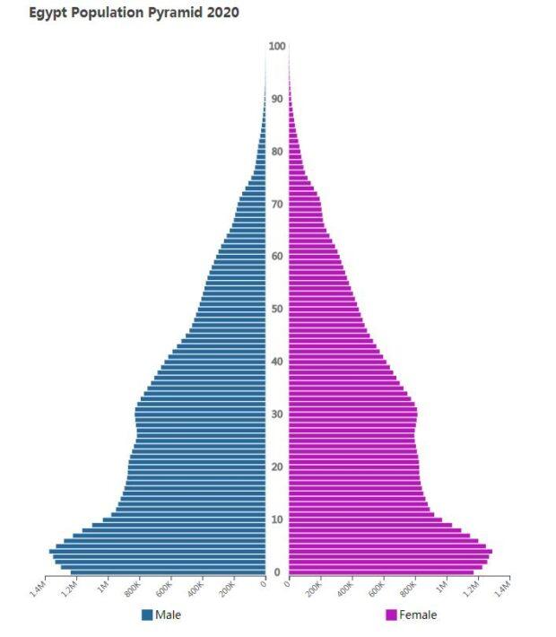 Egypt Population Pyramid 2020
