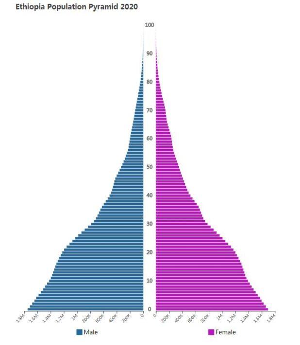 Ethiopia Population Pyramid 2020