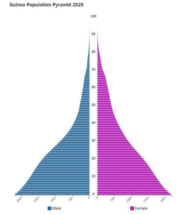 Guinea Population Pyramid 2020