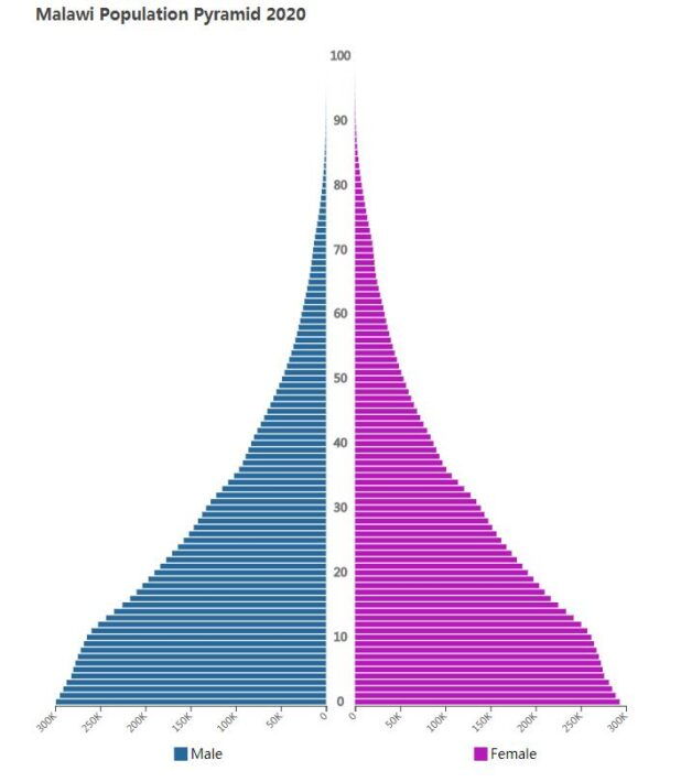 Malawi Population Pyramid 2020