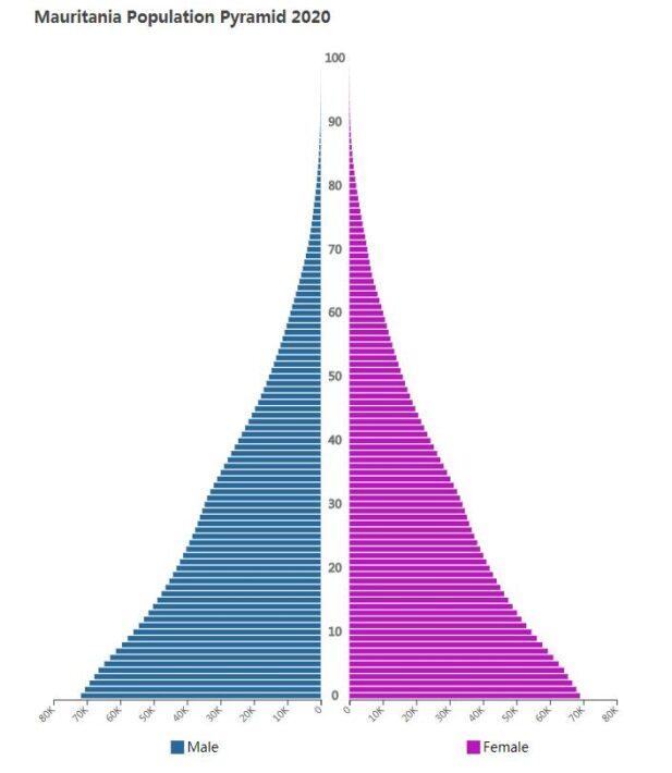Mauritania Population Pyramid 2020