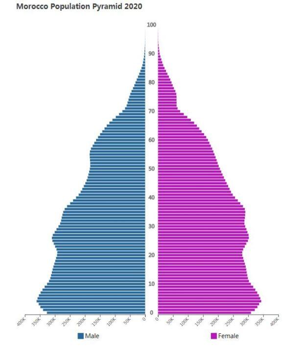 Morocco Population Pyramid 2020