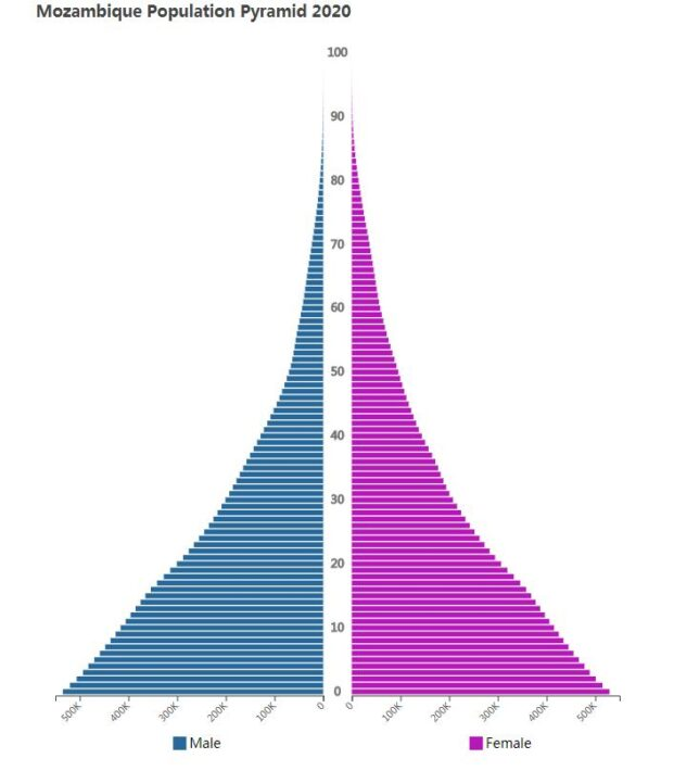 Mozambique Population Pyramid 2020