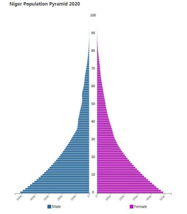 Niger Population Pyramid 2020