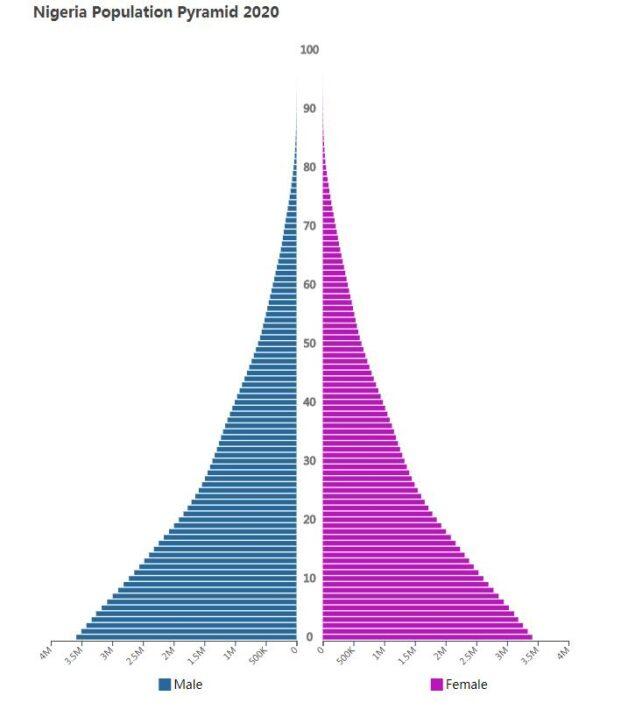 Nigeria Population Pyramid 2020