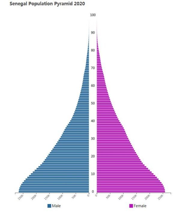 Senegal Population Pyramid 2020