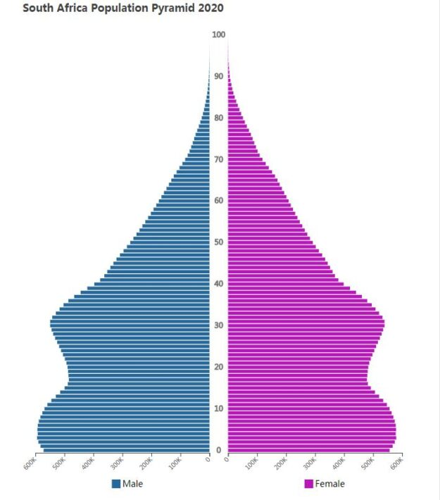 South Africa Population Pyramid 2020