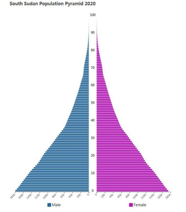 South Sudan Population Pyramid 2020