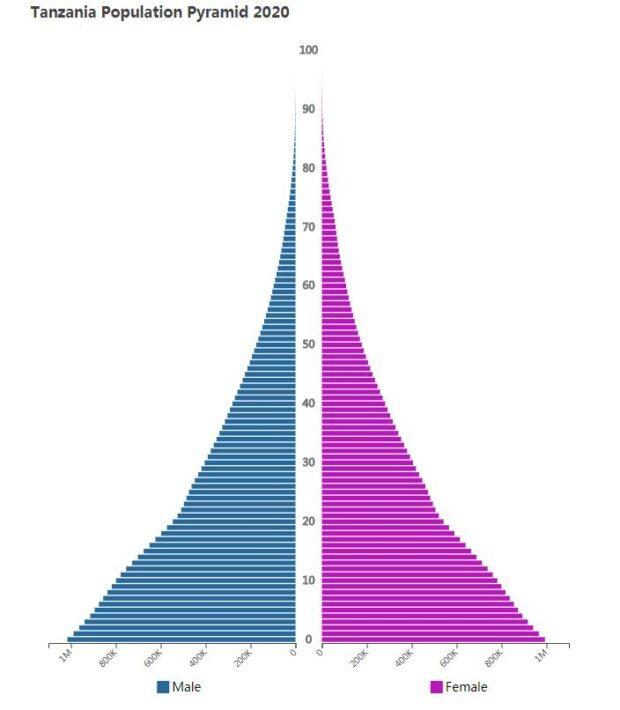 Tanzania Population Pyramid 2020