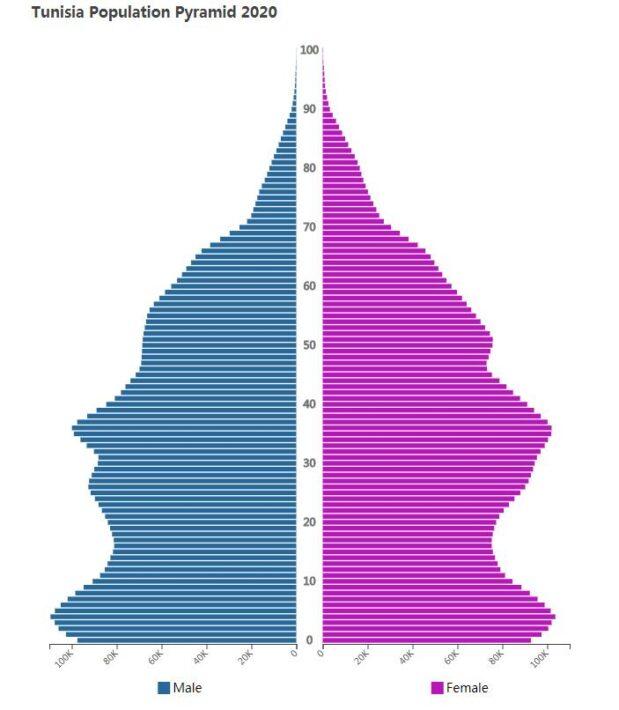 Tunisia Population Pyramid 2020
