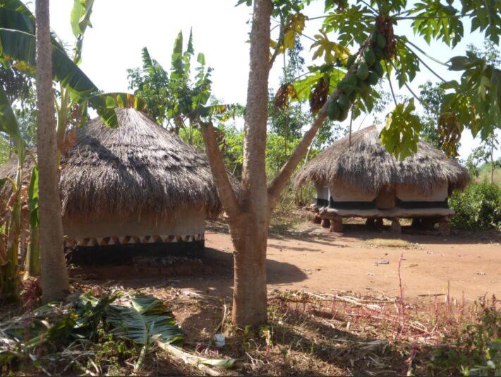 The war in northern Uganda