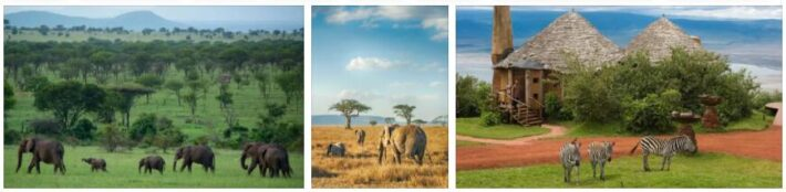 Tanzania Overview